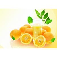 Buy cheap High quality Bergamot Natural Essential oil for massage 100% purity liquid from Wholesalers