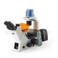 Buy cheap A16.0912-l Trinocular Fluorescence Microscope N.a.0.3 Condenser For Laboratory from wholesalers