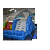 Buy cheap Water Park Slip And Slide Inflatable , PVC Water Slides Jumpers Blue from Wholesalers