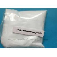 China Testosterone Isocaproate White Crystalline Powder 99.5% for Increasing Weight on sale