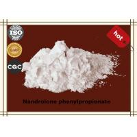 Quality Bodybuilding Steroid Hormone Powder Nandrolone phenylpropionate CAS62-90-8 wholesale