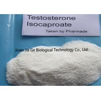 Buy cheap White Steroid Hormone Powder Testosterone Isocaproate CAS 15262-86-9 from wholesalers