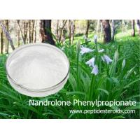 Buy cheap Durabolin Raw Nandrolone Phenylpropionate Raw Steroid White Crystalline Powder from Wholesalers