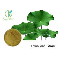 Buy cheap Weight loss Plant Extract Powder , Lotus Leaf Extract Powder with Nuciferine Powder from Wholesalers