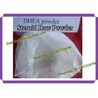 Anabolic Steroid Powder Dehydroisoandrosterone (DHEA)  For Bodybuilding CAS: 53-43-0