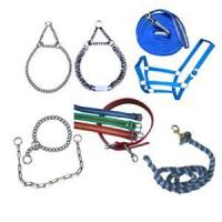 Dog Collar and Animal Leash