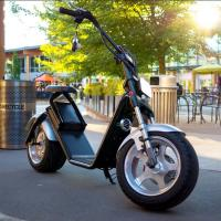 Quality Harley Style Personal Transporter 2 Wheel Electric Scooter Front And Rear Disc wholesale