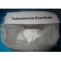 Buy cheap Strongest Testosterone Steroid Powder Primoteston Test Testosterone Enanthate Cycle For Promoting metabolism from Wholesalers