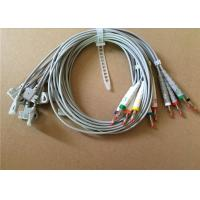 Philips / HP EKG Cable With 10 Lead Wires 2 Pin Connector Grey Color