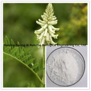 White Powder Natural Herbal Extracts 78574-94-4 Cycloastragenol C30H50O5