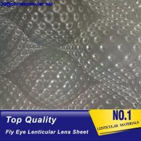 latest fly eye lens film good quality PP 3d fly eye lenticular lens sheet microlens with 3d and 360 degrees