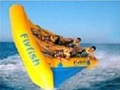 Quality Exciting Inflatable Flying Fish Boat for Entertainment wholesale