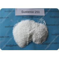 Quality Sustanon 250 Testosterone Hormone Enhance Strength Muscle Growth wholesale