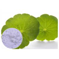 Buy cheap White Gotu Kola Extract Powder , Centella Asiatica Leaf Extract For Skin Scars Repairing from wholesalers
