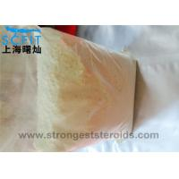 Quality Healthy Nature Androgenic Steroid 99.9% powder Androsterone for Man Muscle Growth wholesale