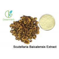 Buy cheap Root Plant Extract Powder 85% 90% HPLC Baicalin Scutellaria Baicalensis Extract from wholesalers