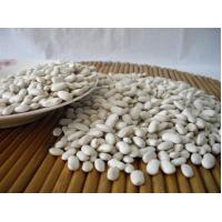 Buy cheap White bigger size wholesale that have good quality for selling from wholesalers