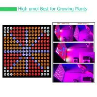 Quality Indoor Garden Full Spectrum LED Grow Lights For Reenhouses , 75W Wattage wholesale
