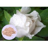 Buy cheap Peony Root Plant Extract Powder Paeonia Lactiflora For Skin Whitening from Wholesalers