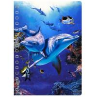 Buy cheap New Design 3D PET Cover Lenticular Spiral A5 Notebook For Promotion Gifts from Wholesalers