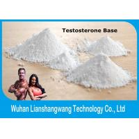 Quality Legal Testosterone Anabolic Steroid Raws Test Base Powder CAS 58-22-0 For Muscle Mass wholesale