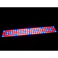 Buy cheap 20W 40W 60W 80W 100W LED Grow Light Hydroponic Plant – Growth Lighting from Wholesalers