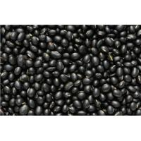 Buy cheap 2016 crop health food black soybean extract powder soy bean extract  isoflavones from wholesalers
