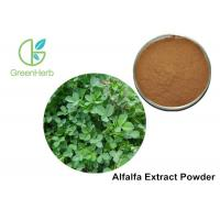 Buy cheap Food / Medical Grade Alfalfa Vegetable Extract Powder / Medicago Yellow Color from wholesalers