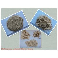 Buy cheap Eleutherosides B+E 0.8% Natural Siberian Ginseng Root Extract Powder from Wholesalers