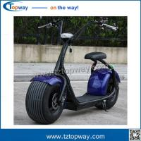 China Off Road Chariot Adult Tricycle Powerful High Speed Electric Harley Motorbike on sale