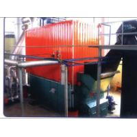 Natural Gas/Fuel Oil/Coal/Biomass fuels Fired thermal oil boiler,thermal oil heaters