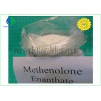 Buy cheap CAS 303-42-4 Nandrolone Steroid , Methenolone Enanthate Powder Lean Muscle Steroids from Wholesalers