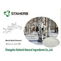 Buy cheap Betulinic Acid Birch Bark Extract , Herbal Reference Standards Antitumor from wholesalers