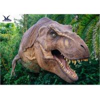 Buy cheap Dinosaur Yard Statue With Realistic Head Model , Dinosaur Garden Sculpture  from Wholesalers