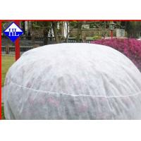 Buy cheap Spunbond Winter Crop / Plant Protection Fabric , Non Woven Fabric Used In Agriculture from Wholesalers