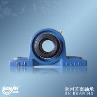 Mounted Bearing Units / Cast Iron Pillow Block Bearing For Conveyer HCP206 UELP206