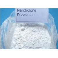 Quality 98% Purity Anabolic Steroid Nandrolone , Nandrolone Propionate 7207-92-3 wholesale