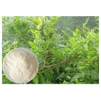 Buy cheap Dihydromyricetin ease alcohol syptoms Ampelopsis grossedentata Extract powder from Wholesalers