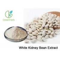 China Plant Extract 1% Phaseolin White Kidney Bean Extract Phaseolus Vulgaris L on sale