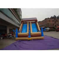 Funny Outdoor Inflatable Slide , Inflatable Wet / Dry Slide For Kids