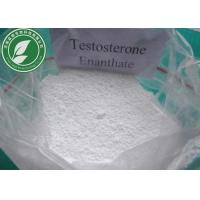 Buy cheap Raw Steroid Powder Testosterone Enanthate CAS 315-37-7 With Safe Delivery from Wholesalers