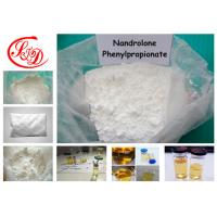 Buy cheap Nandrolone Muscle Steroid Powder Nandrolone Phenylpropionate 62-90-8 NPP for Bodybuilding from Wholesalers