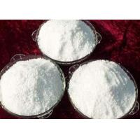 White Testosterone Anabolic Steroid , Testosterone Based Steroids Powder Cas 58 22 0 Muscle Growth