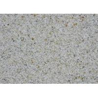 Weather Resistant Sandstone Rough Texture Spray Paint Anti - Fouling