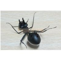 Business Promotion Moving Solar ABS ant Gift Toy