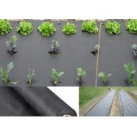 Buy cheap Anti UV Sunshine PP Non Woven Landscape Fabric Crop Cover Cloth Spunbonded Waterproof from Wholesalers