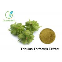 Buy cheap Tribulus Terrestris Extract Plant Extract Powder 40% - 90% Saponins For Cardiotonic from wholesalers