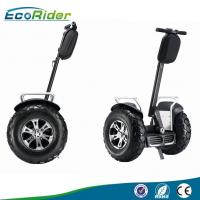 Quality Brushless Motor 4000 Watt Segway Electric Scooter Self Balancing with Speedmeter wholesale