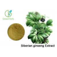 Buy cheap Eleutherococcus Senticosus Siberian Ginseng Extract Brown Yellow Powder from wholesalers