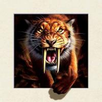 Buy cheap Strong 5d Deep Effect Lenticular Photo Printing 40x40cm Picture Tiger / Wolf from Wholesalers